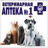 Ветеринарные аптеки в Ленинск-Кузнецком